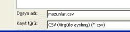 Dosyayı kaydederken türünü CSV (virgülle ayrılmış) (*.csv) olarak seçmelisiniz