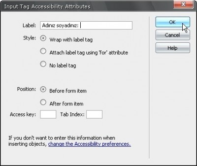 Eklediğiniz form elemanı ile ilgili erişilebilirlik seçenekleri