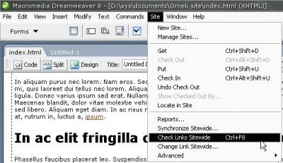 Site / Check links sitewide menüsü ile sitemizdeki tüm linklerin geçerliliklerini kontrol ettirebiliriz