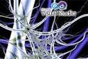 VisualBasic.NET - Bitsel Operatörler-And Operatörüne Giriş-2